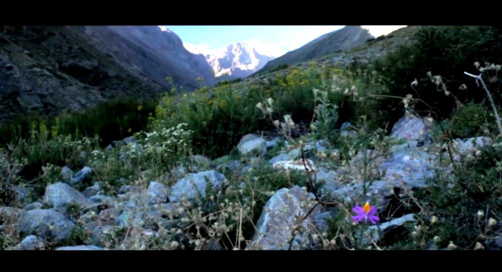 Simultáneo | Andes Faúndes Toro | María de los Ángeles Toro