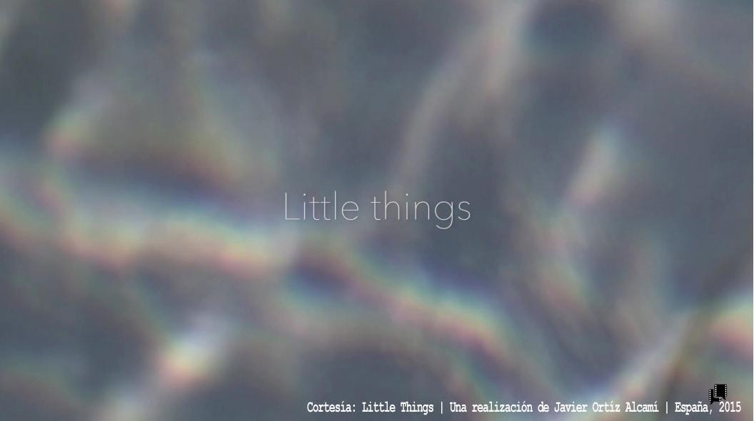 Little Things  | Una Realización de Javier Ortiz Alcamí | España, 2015